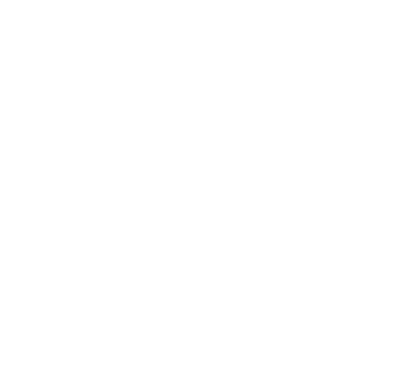 Smoke & Salt logo